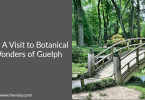 Pay A Visit to Botanical Wonders of Guelph