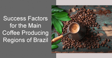 Success Factors for the Main Coffee Producing Regions of Brazil