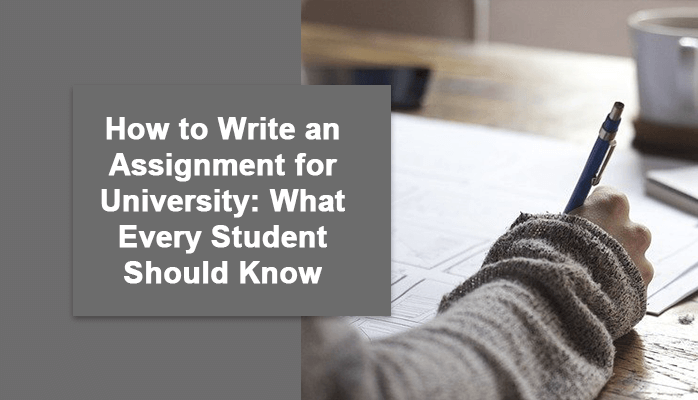 How to Write an Assignment for University: What Every Student Should Know